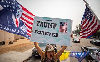 美國大選 新澤西數十個支持川普標誌牌被盜