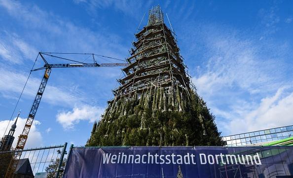 最高聖誕樹搭建中 德國多特蒙德市忍痛拆除