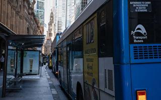 夏天旺季将至 悉尼再增1200趟公共交通服务