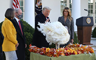 【重播】川普和夫人舉行感恩節火雞赦免儀式