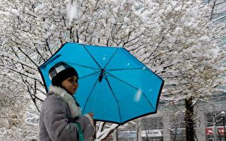 新澤西北部地區降下第一場雪