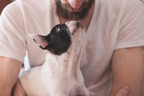 美国男子抱爱犬突然中枪 肇事者竟是它