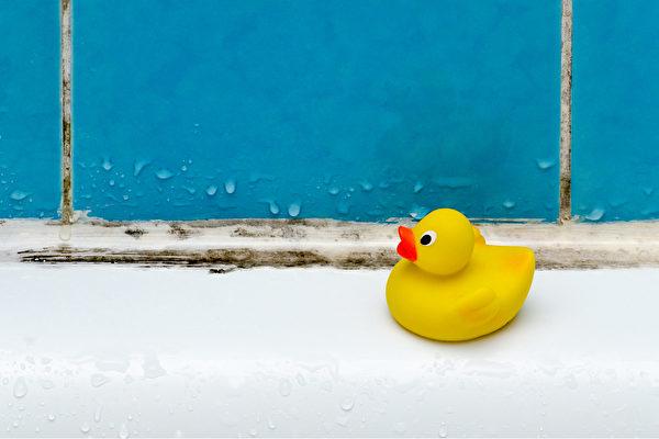 杜絕濕氣的來源,才能預防黴菌再度產生。(Shutterstock)