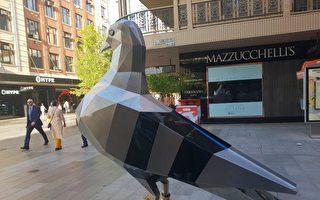 """""""巨鸟""""飞临阿德莱德兰道购物街"""