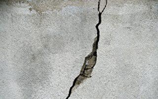 植樹損毀民房 墨爾本市府須賠40余萬