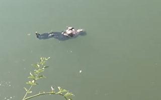 太淡定了 湖南87岁老妇坠河后抱臂漂浮获救