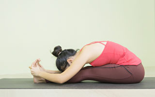 坐姿前弯:简单一个动作 拉伸全身后侧肌肉