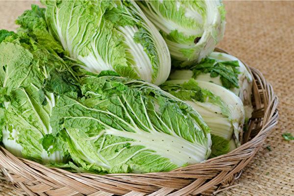 挑选大白菜,少许的黑点没关系,但建议避免购买有密密麻麻黑点的大白菜。(Shutterstock)