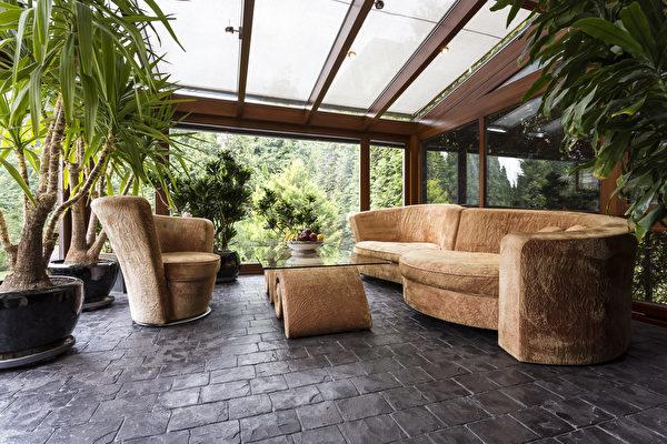 地板, 宠物, 沙发, 接待, 客厅