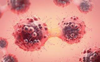 台研发全球首株抗体 可直接杀死癌细胞