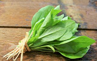 菠菜增强免疫力、补血 营养师分享2道美味料理
