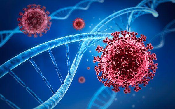 美发现新COVID-19变种 可引发重症抵御抗体