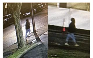 Waltham凶徒袭击11人 警方悬赏$5000缉拿