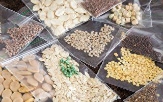 農業部警告:260個不明種子包裹被寄到澳洲