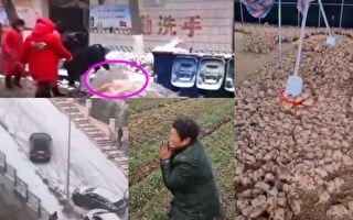大陆多省降雪多地停课 环卫工人、鸡苗被冻死