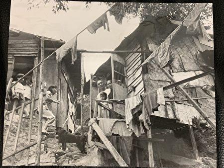 圖為珍藏的香港舊英文報。這張1961年4月2日的新聞圖片下寫道:來自紅色中國的難民們認為他們很幸運,即便他們棲息在山邊這樣的小屋中。