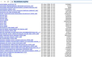维基解密文件爆ACORN为奥巴马拉票术