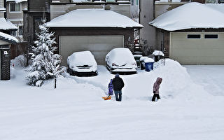 上周暴雪占卡城全年积雪量的27%
