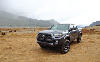 車評:玩樂工作兩兼得 2020 Toyota Tacoma Ltd