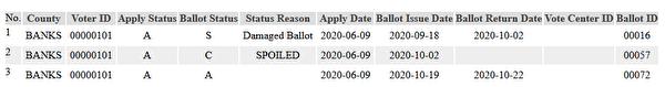 乔州数据库现怪象:选民超过成年公民总数