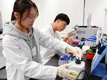 中正大學學生團隊研發檢測試劑,可30秒快速偵測登革熱!