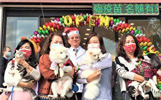 提高犬貓存活率  台灣首家寵物微創醫院開幕