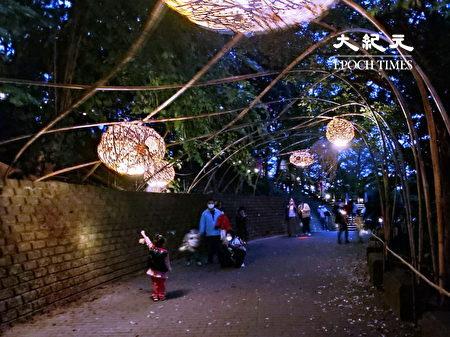 除了地面上作品外,在地的竹子亦能展現在空中的創作品。