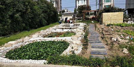 生态池引入污渠水,利用自然工法以水生植物净化水质,并用微生物菌球分解水中有机物,最终池水则做为灌溉用。