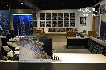 """""""台湾的微化石""""展区内的微体古生物学家的研究室。"""