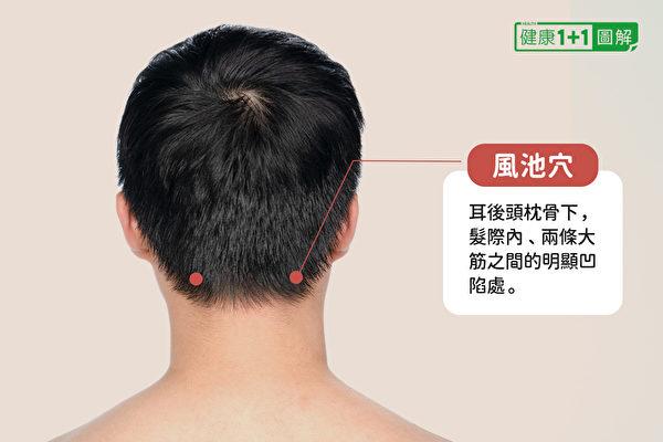 风池穴在耳后头枕骨下,发际内、两条大筋之间的明显凹陷处。(健康1+1/大纪元)