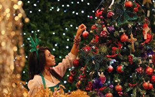 你购物清单上的圣诞树已经卖光了!