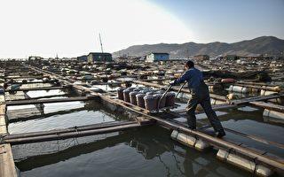 美政府报告指中国渔业人口贩卖最严重