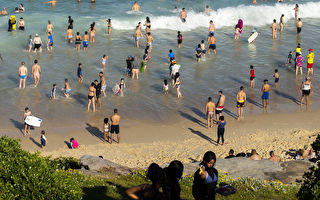 威胁公共安全 悉尼海滩外国狂欢客或被驱逐