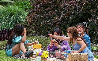 墨尔本最适合野餐的公园在哪里