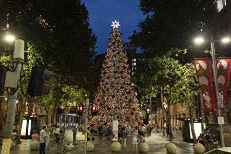 悉尼聖誕樹彩燈