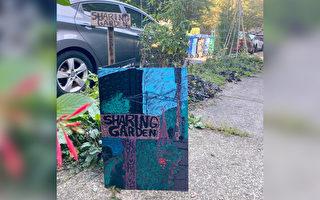 为无家可归邻居建菜园 爱心女收到神秘卡片