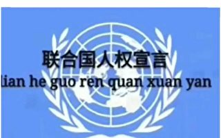人權日 訪民喊:我是中國人我沒有人權