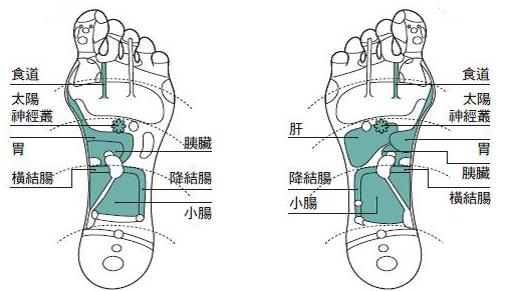 改善食欲不佳或过盛的穴位指压,图为脚底示意图。(采实文化提供)