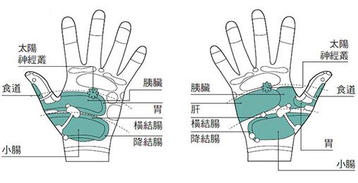 改善食欲不佳或过盛的穴位指压,图为手心示意图。(采实文化提供)