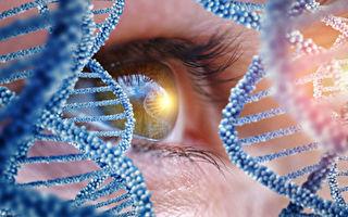 基因療法治療遺傳性失明