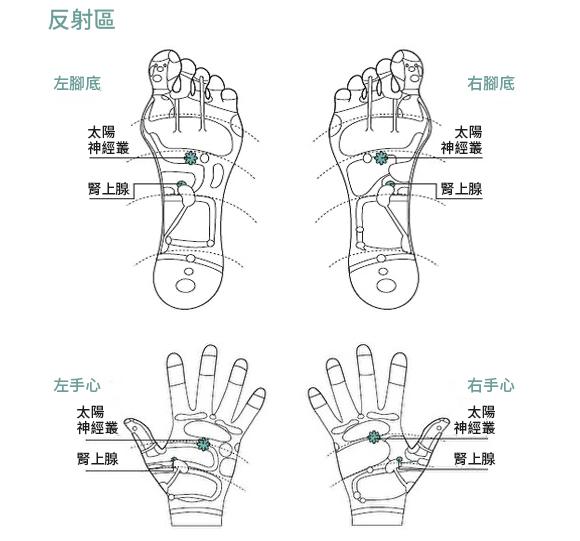 """身体过敏时,按压""""太阳神经丛""""反射区,可以安抚情绪,图为脚底和手心反射区穴位。(采实文化提供)"""