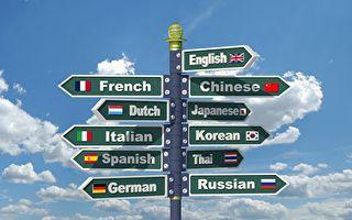 研究:成年人學外語改變左右腦分工