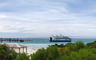 南澳袋鼠島新輪渡服務公開招標