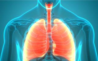 特發性肺纖維化如何治療?哥大專家談3種選項