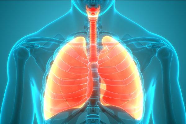 特发性肺纤维化如何治疗?哥大专家谈3种选项