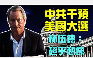 中共干預美國大選  林伍德:超乎想像