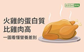 火雞的蛋白質比雞肉還高 一圖看懂營養差別
