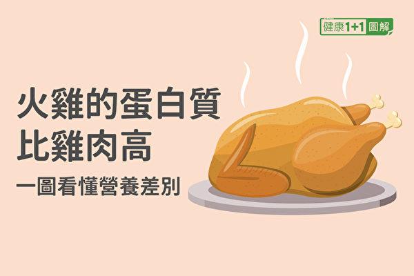 火鸡所含的蛋白质比鸡肉还高,但热量、脂肪却比鸡肉低很多。(健康1+1/大纪元)