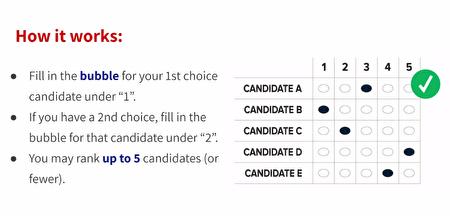 「排序選擇投票」選票樣本。