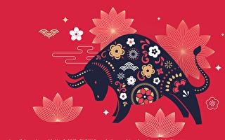 纽约华人社区线上中国新年晚会